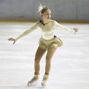 figure-skater-266512_640